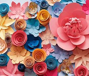 bunte-Blumen-Fotobix-Hintergrund