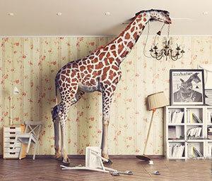 Fotobox-Hintergrund-Giraffe